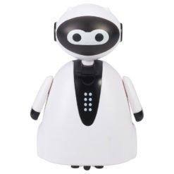 Custom Magic Inductive Robot
