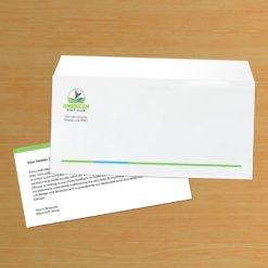 Custom No 9 Envelope