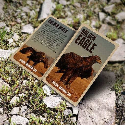 Brown Kraft Trading Cards with printed color on Both Side and Thick Brown Kraft Uncoated (Uncoated - 18pt) stock for promoting business, sports team, pets, comic heros